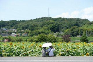 ひまわり園(五條市)
